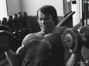 arnold 5